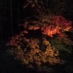 紅葉の美山荘へ