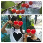 PhotoGrid_1466983874142.jpg