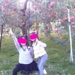 松川へりんご狩り♪