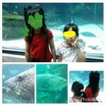 PhotoHenshu_20170521210257.jpg