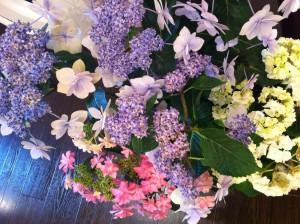 父の紫陽花
