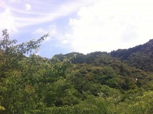 金華山 登山