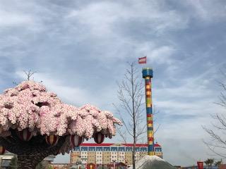 名古屋でまだまだお花見できる場所