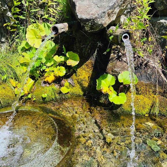 山から湧き出る清水を飲んでみた!富良野「原始の泉」