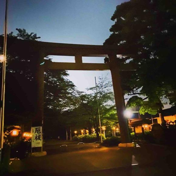 コロナ禍で名古屋城にヒメボタル(蛍)が大発生!美しい日本の夏です