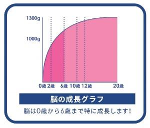 18ヶ月から自ら考える脳を作る!「まないきラボ・東京英才アカデミー」9月に開校!